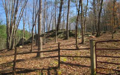 Hayesville Residential Lots & Land For Sale: Highway 64 West
