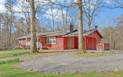 Ellijay Single Family Home For Sale: 1051 Ray Mountain Road
