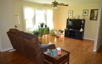 Fannin County Single Family Home For Sale: 266 Milsaps Circle