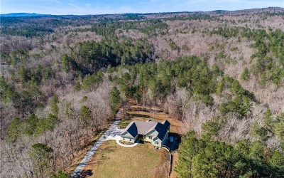 Pickens County Single Family Home For Sale: 2185 Carver Mill Road