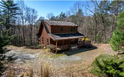 Gilmer County Single Family Home For Sale: 17 Leatherwood Mountain
