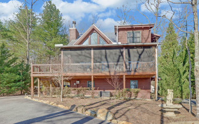 Blairsville Single Family Home For Sale: 63 Harmony Lane