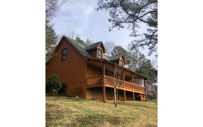 Ellijay Single Family Home For Sale: 5698 Tails Creek Road