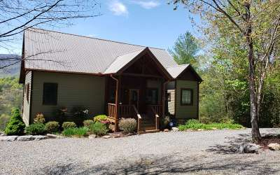 Hiawassee Single Family Home For Sale: 3165 Baldview Road