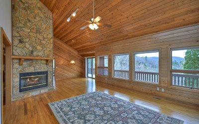 Blue Ridge Single Family Home For Sale: 355 Swiss Lane