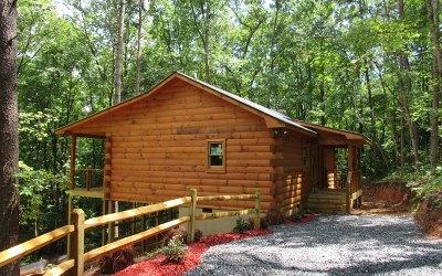 Blue Ridge Single Family Home For Sale: 868 Granny Branch Dr.