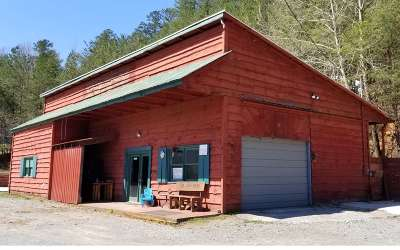 Ellijay Commercial For Sale: 1328 Old Northcutt Road