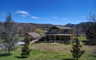 Blairsville Single Family Home For Sale: 228 Meadow Creek Drive