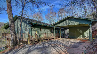 Hiawassee Single Family Home For Sale: 2315 Layson Road