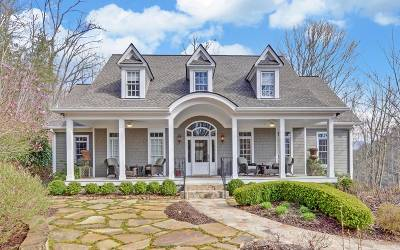 Hayesville Single Family Home For Sale: 968 Stamey Cove Road
