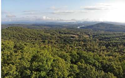 Blairsville GA Residential Lots & Land For Sale: $37,850