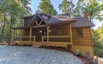 Ellijay Single Family Home For Sale: 156 Etowah Drive