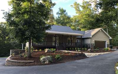 Mineral Bluff Single Family Home For Sale: 1168 Blue Bird Rd