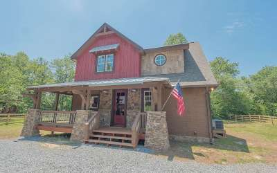 Mineral Bluff Single Family Home For Sale: 789 Bell Road