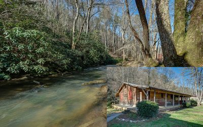 Cherokee County Single Family Home For Sale: 54 Flax Dr