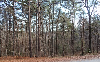 McCaysville Residential Lots & Land For Sale: 168 Fightingtown Creek R