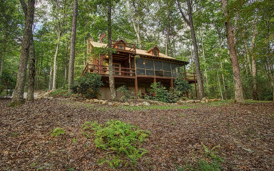 Blue Ridge Single Family Home For Sale: 760 Harrison And Ada Rd
