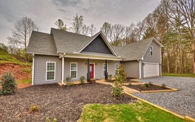 Mineral Bluff Single Family Home For Sale: 53 Roy Dr