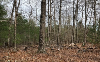 Jasper Residential Lots & Land For Sale: 01 Tater Tot Road