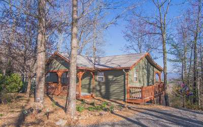 Hayesville Single Family Home For Sale: 834 Wikle Road