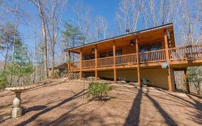 Fannin County Single Family Home For Sale: 11 Jason Martin Circle