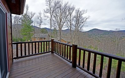 Blairsville Single Family Home For Sale: 349 Red Twig Rd