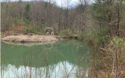 Hayesville Residential Lots & Land For Sale: Peckerwood