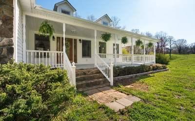 Ellijay Single Family Home For Sale: 1833 Clear Creek Rd