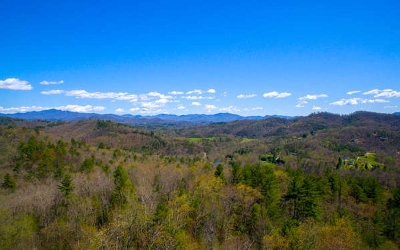 Hayesville Residential Lots & Land For Sale: Fires Creek Road