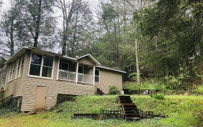 Blue Ridge Single Family Home For Sale: 438 Ballewtown Road