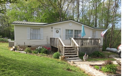 Blue Ridge Single Family Home For Sale: 334 Old Epworth Rd