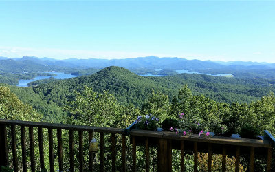 Hayesville Single Family Home For Sale: 248 Summit Drive