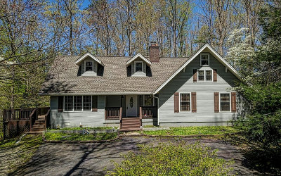 Blairsville Single Family Home For Sale: 68 Windflower Drive