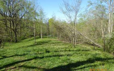 Hayesville Residential Lots & Land For Sale: Lt 6 High Meadows