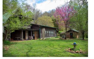 Brasstown Single Family Home For Sale: 167 Green Cove Road