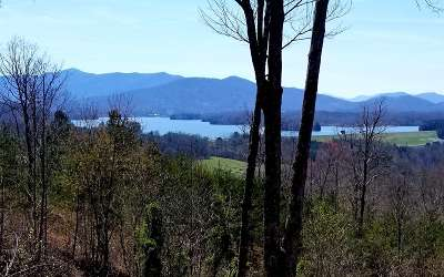 Hayesville Residential Lots & Land For Sale: Lot 1 Majestic Drive