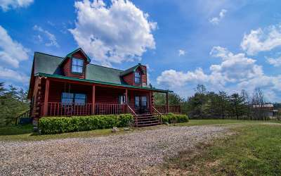 Blairsville Single Family Home For Sale: 225 Porter Place