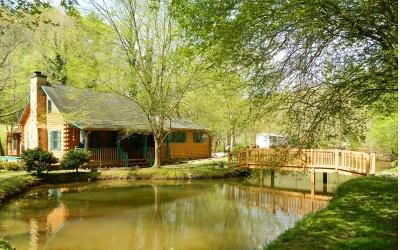 Fannin County Single Family Home For Sale: 85 Jo Anne Sisson