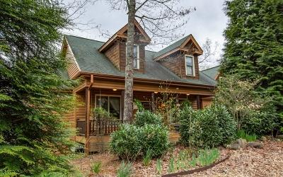 Ellijay Single Family Home For Sale: 670 Dover Highlands Trl
