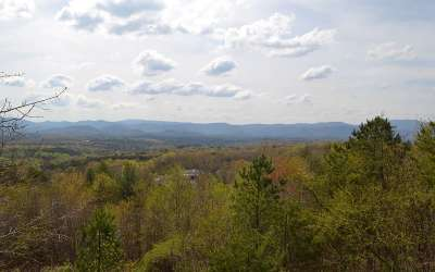 Blue Ridge Single Family Home For Sale: 354 Sky High Drive