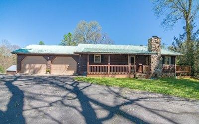 Ellijay Single Family Home For Sale: 4621 Clear Creek Road