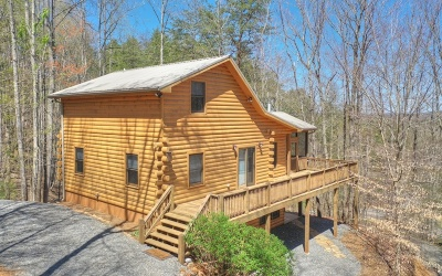 Blue Ridge Single Family Home For Sale: 95 Lakeview Rd