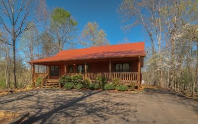 Ellijay Single Family Home For Sale: 170 Orlon Dr.