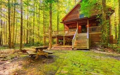 Ellijay Single Family Home For Sale: 11937 Old Ccc Camp Road