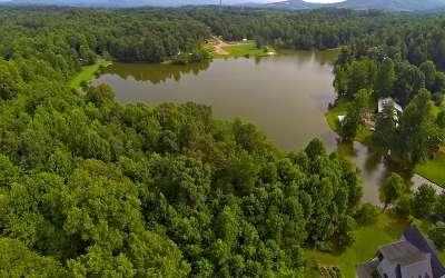 Ellijay Residential Lots & Land For Sale: 16+ac Hefner Lake