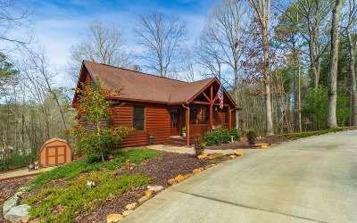 Ellijay Single Family Home For Sale: 281 Summit Drive