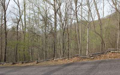Mineral Bluff Residential Lots & Land For Sale: L 57 Raven Ridge Sd
