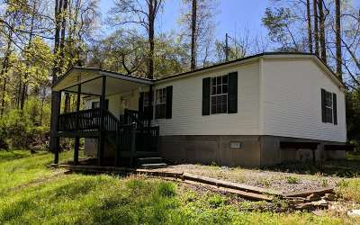 Fannin County Single Family Home For Sale: 12811 Morganton Hwy