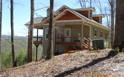Hiawassee Single Family Home For Sale: 491 Redbud Lane