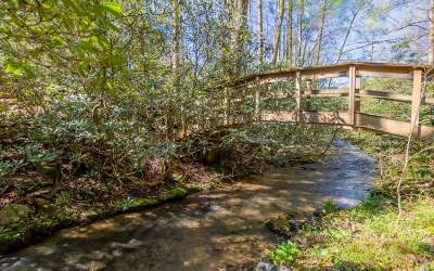 Blue Ridge Single Family Home For Sale: 220 Sweetwater Rd